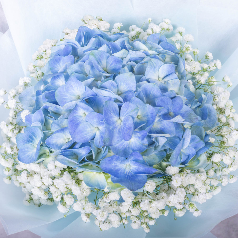 Hydrangea Bouquet by Farmflorist Close-up
